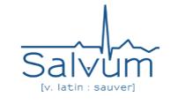 Logo salvum